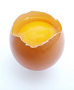 zinc dans le jaune d'œuf