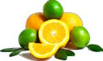 Vitamine C citron orange